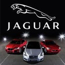 Interactive Jaguar