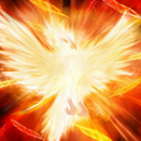 phoenix_alx phoenix_alx