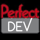 Perfect Dev