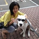Amy Cheon
