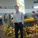 Trinh Bich