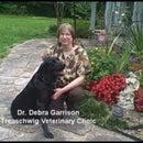 Debra Garrison