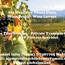 Travel,Chile,Wines