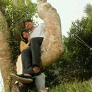 Ehsan Fahmy