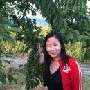 May Lai