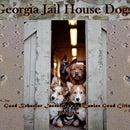 Georgia Jail House Dogs Inc.