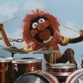 Jesse Drums