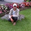 Masud Boda