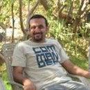 أشرف حمدي