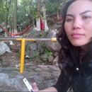 Duong Tien Bac
