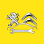 Сити Франс Сервис (Peugeot Citroen Service)