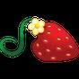 Strawberry Darling