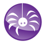 CyberSpyder Marketing Services